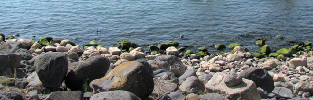 Sea of Galilee shore